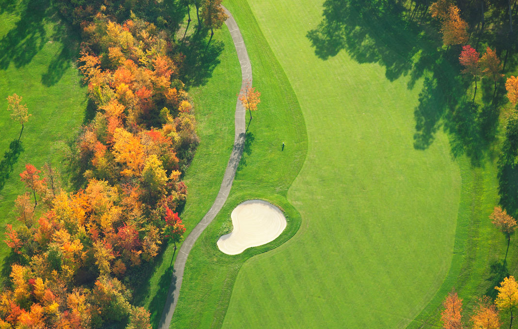 Golfsure web design Hills District